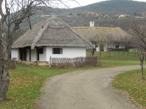 Houses in museum
