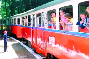 The children's railway (formerly the Pioneer Railway).